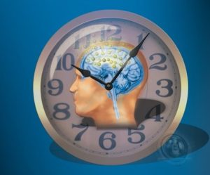Clock and Brain Illustration